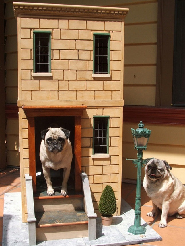 Doggie Mansions Trend